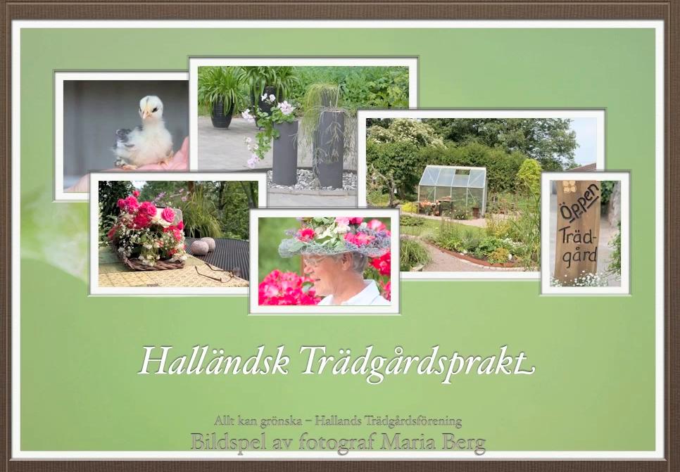 Halländsk trådgårdsprakt, fotograf Maria Berg.png