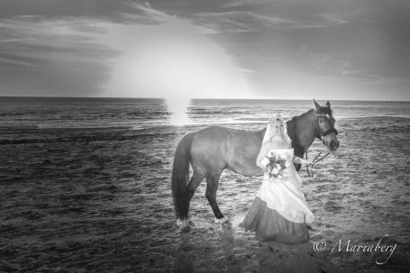 Brud i solnedgång med häst