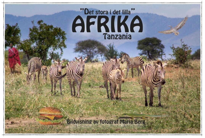afrika-det-stora-i-det-lilla-bildvisning